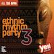 Ethnic Rhythm Party 3